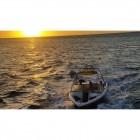 Monster Tower Cargo Bimini wakeboard wakesurf top view