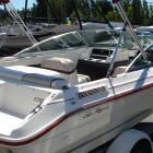1993 SeaRay 170 007